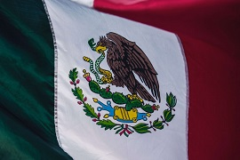 I can already say that we started the economic recovery: President of Mexico